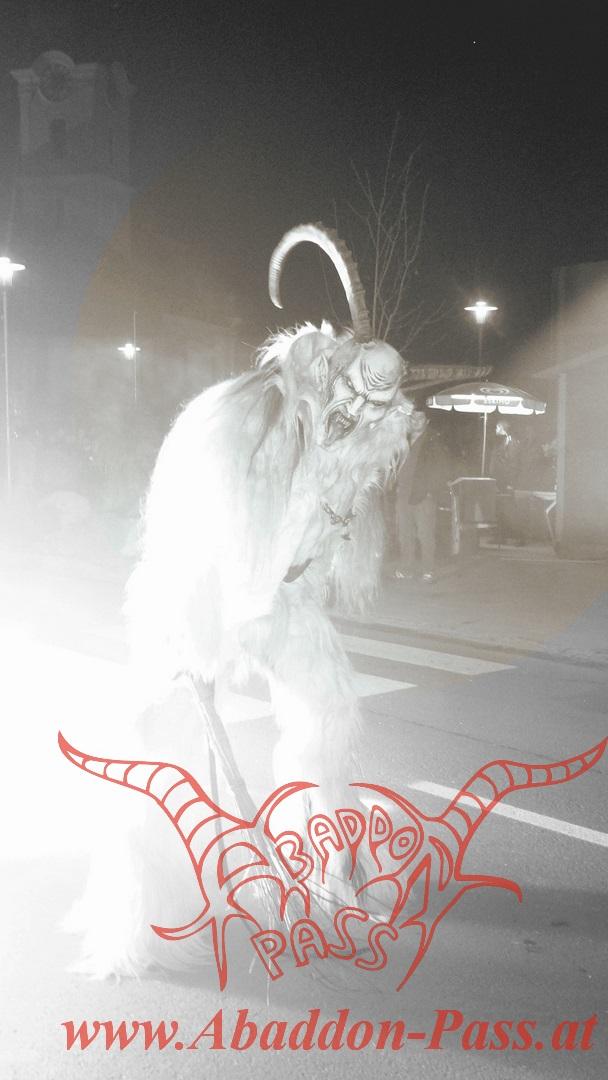Heiligenkreuz 2012 (68) (Homepage)