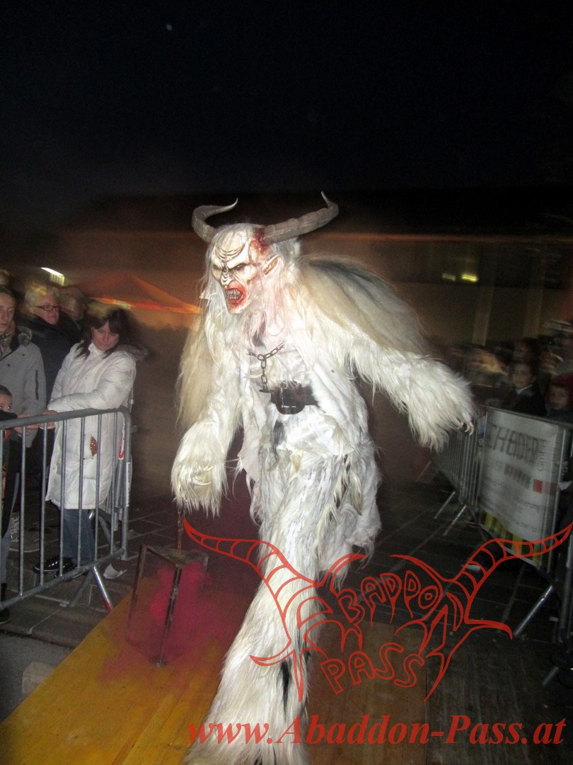 Heimlauf 2012 (12) (Homepage)